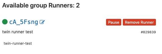 Gitlab runner ที่ regis เข้ามา